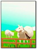 Beauty Sheeps