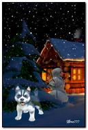 작은 강아지 밤 눈