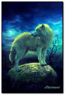 Cô đơn Wolf 320x480
