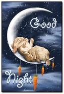 chúc ngủ ngon