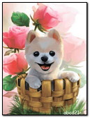 Dog In A Basket And Roses