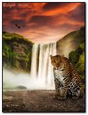 Cheetah Near Waterfall