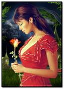 Anim Kız