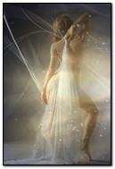 Fairytale Fairy
