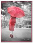Rojo Lluviia