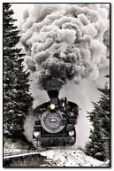 रेल गाडी