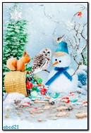 雪人和动物