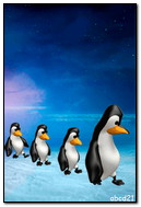 The Walk Of The Penguins