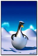 Penguin In The Egg
