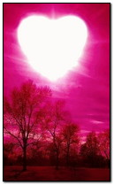 Coeur de soleil