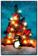 The Penguin Around The Christmas Tree