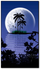 Fantazy Moon