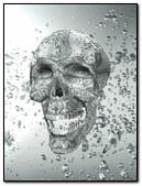Crystal Skull 240x320
