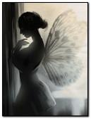 Fairy In Dark