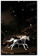 घोड़ा रात