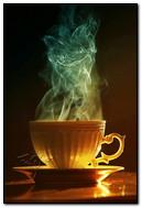 Kahve Kedisi