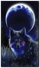 หมาป่าดวงจันทร์