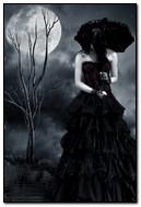 गॉथिक रात्री