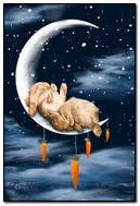 The Rabbit On The Moon