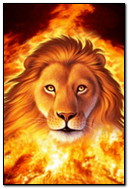 Вогонь Лев