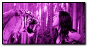 Katy Perry Purple Effect (8)