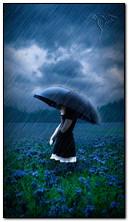Một mình dưới mưa
