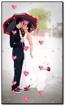 L'amour est Everywere