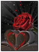 Heart & Rose