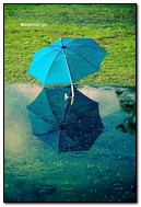 Ombrello blu