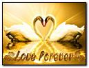 Sonsuza kadar aşk
