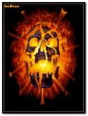 Calavera Fuego 320x480