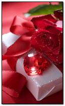 Liebliche Rose