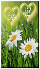 Аллах С. К. Мухаммед ПАВ