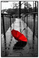Red Umbrela