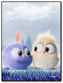 Angry Birds 3d Movie