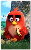 Angry Bird Movie 3d