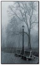 Pluie au parc
