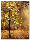 Autumnal Park 240x320