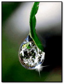 Sparkling Water Drop
