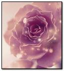 Rose Anim