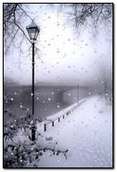 Парижская зима