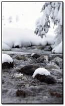 ستريم في فصل الشتاء