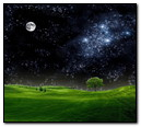Night Of Stars 02