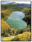 Lake Heart