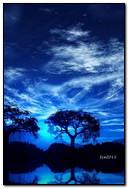 ليلة زرقاء
