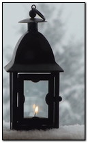 Lantern At Winter
