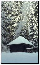 Dom zimowy