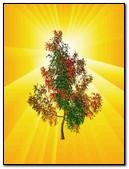 Rainbow Tree 240x320