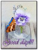 Good Day!!!
