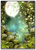 місячне світло